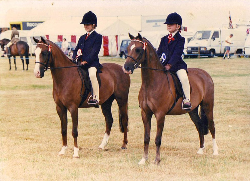Douthwaite Knave of Hearts & Bourneside Noble Knight 1st & 2nd HOYS FR at Ashby de La Zouch